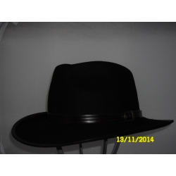 CAPPELLO WESTERN IN LAPIN